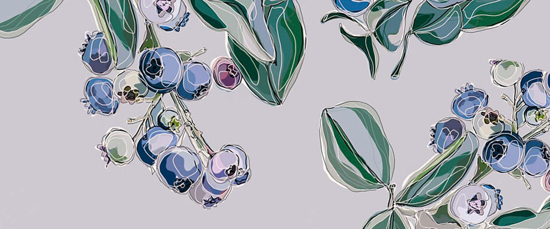 JR_Web_DigitaleIllustrationen_header