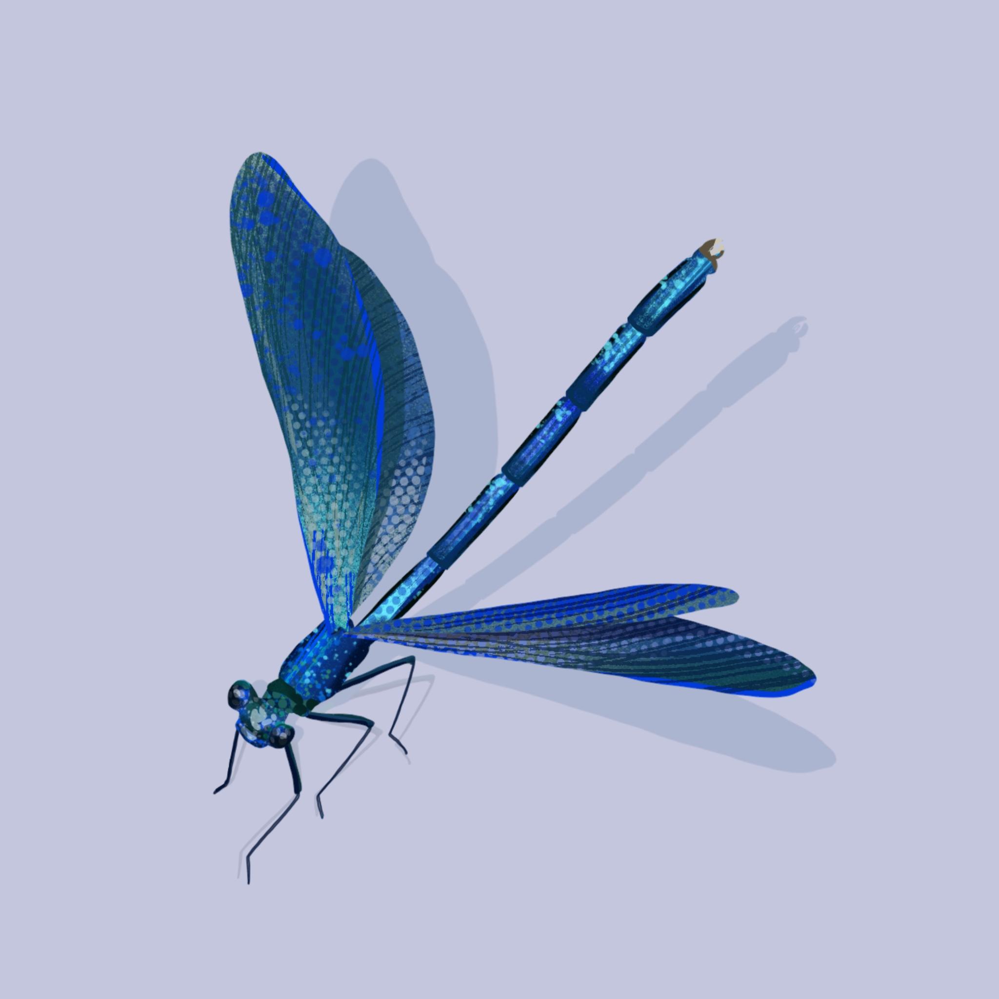 Detaillierte Illustration einer Libelle auf blaulilanem Hintergrund.